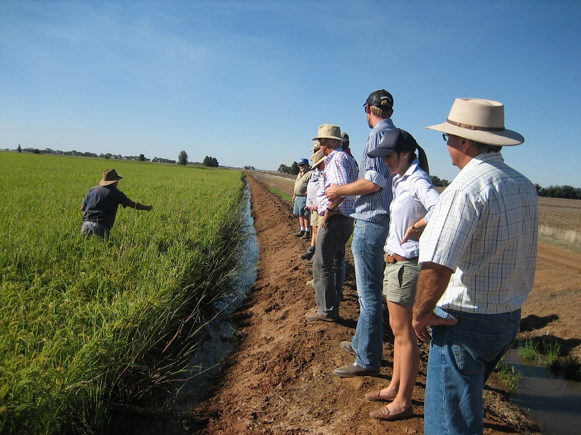 Image: Agricultural Tours Riverina