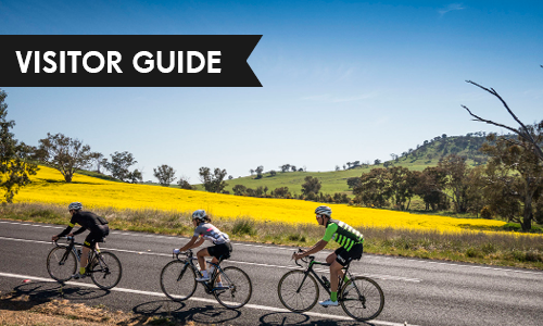Wagga Visitor Guide