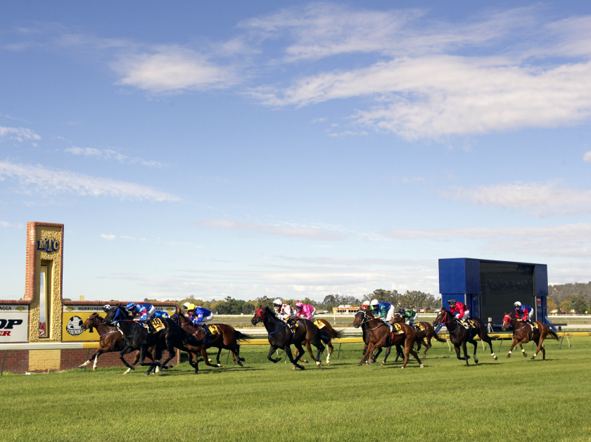 Horse racing at Murrumbidgee Turf Club, Wagga Wagga
