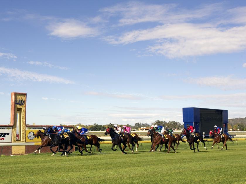 Horse racing at Murrumbidgee Turf Club, Wagga Wagga