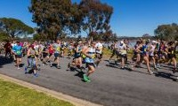 Competitors running in the Wagga Lake Run and Ride alongside Lake Albert in Wagga Wagga