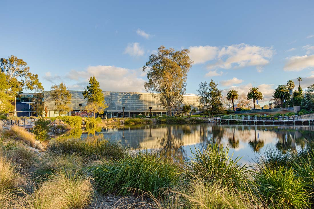 The Civic Centre Precinct in Wagga Wagga by the Wollundry Lagoon