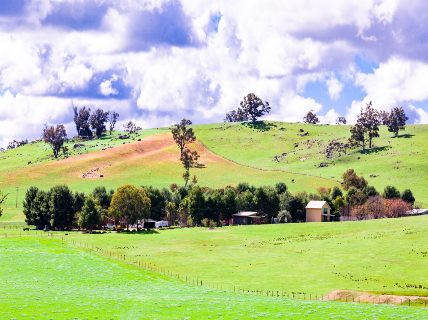 Image: Hillview Farmstay