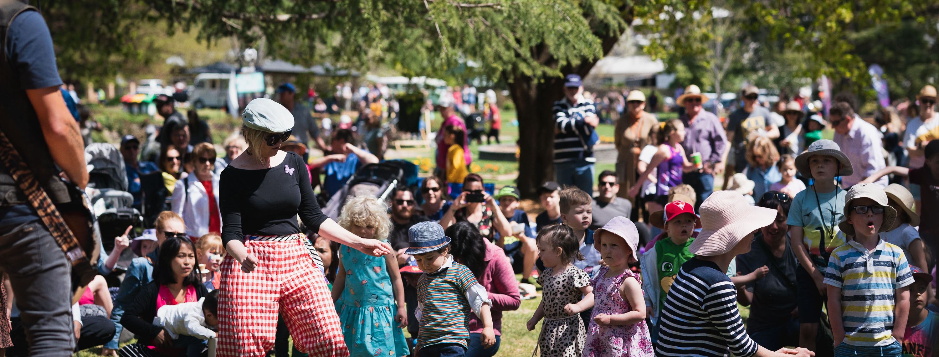 Crowds at the Spring Jam family festival in Wagga Wagga