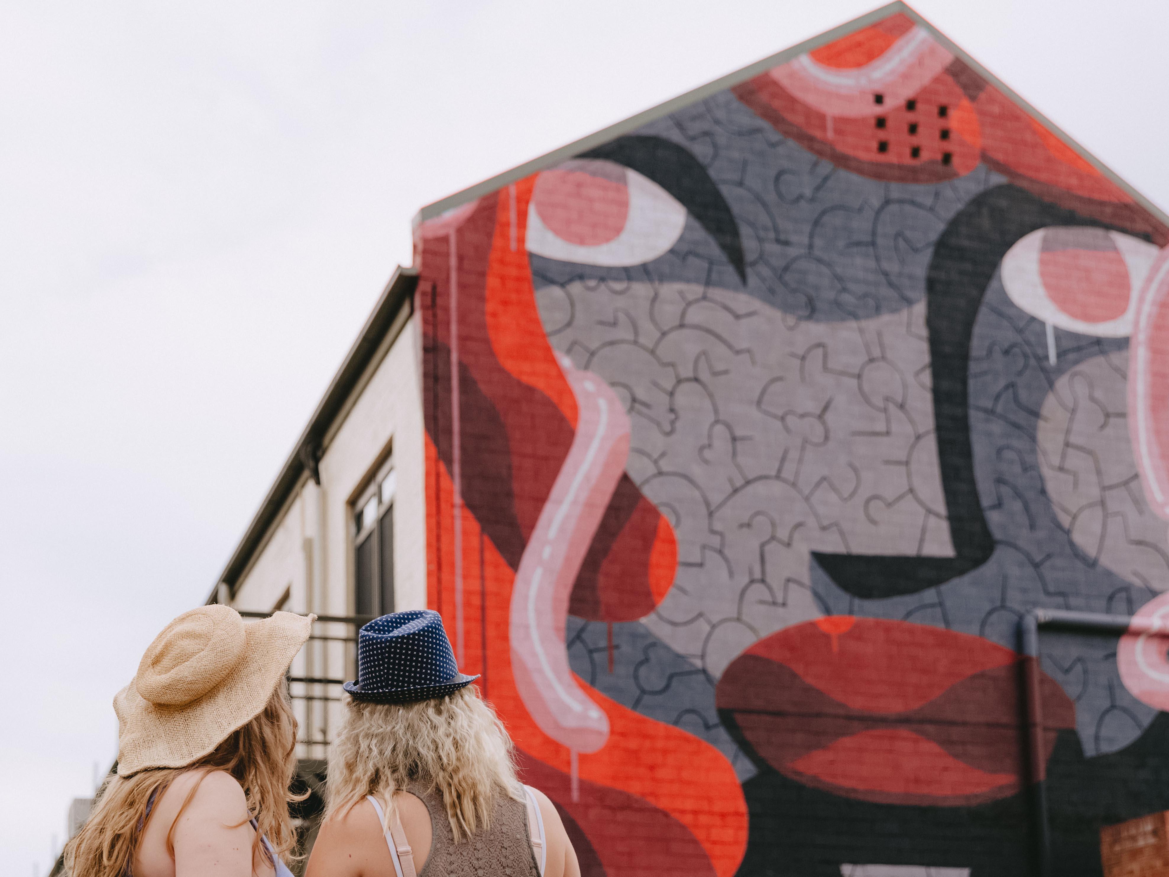 Murals in laneway in Wagga Wagga