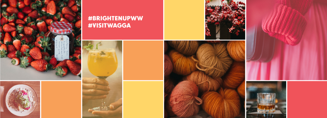 A banner image for the Brighten Up Wagga Wagga campaign featuring coloured solid boxes and bright imagery of location in Wagga Wagga