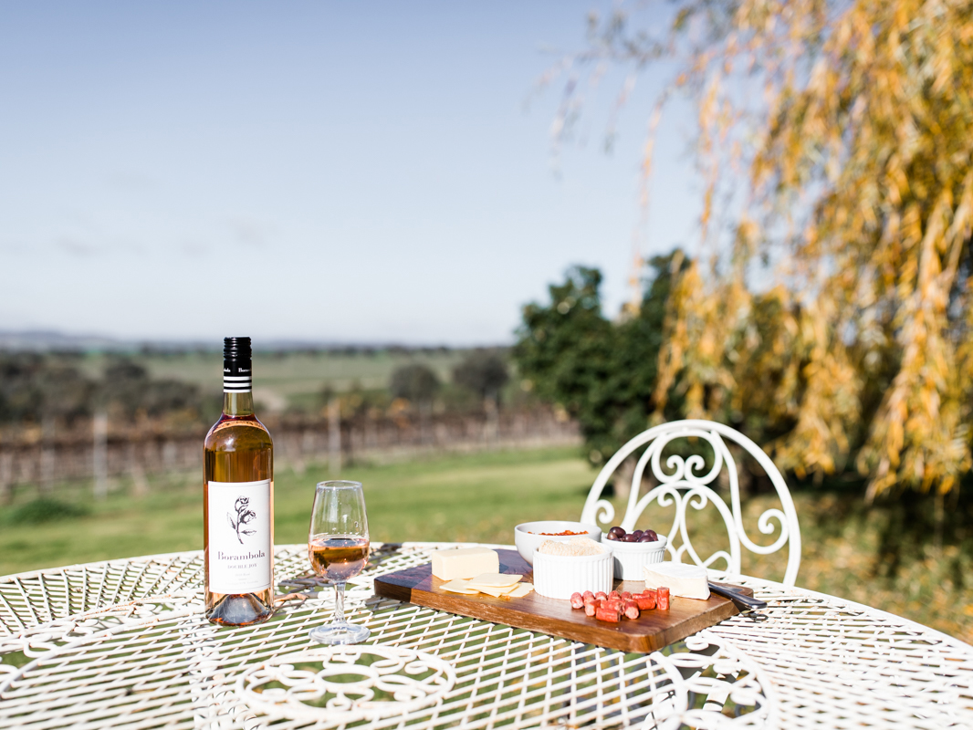 Bottle of wine and cheese platter on a table outside on a sunny day