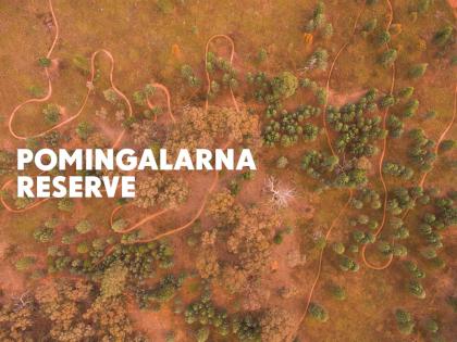 Pomingalarna_Thumbnail
