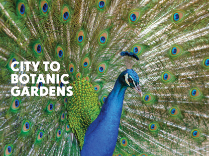 Botanic Gardens Thumbnail